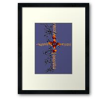 New World Cross Framed Print