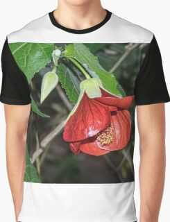 Red flower on shrub leith Park Victoria 20160430 6937  Graphic T-Shirt