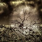 Storm Tree by Randy Turnbow