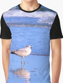 Seagull And The Surf Graphic T-Shirt