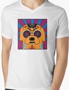 Jake's time of Adventure Mens V-Neck T-Shirt
