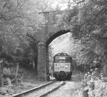 """""""Class 31"""" Passing Under a Bridge by MrGand"""
