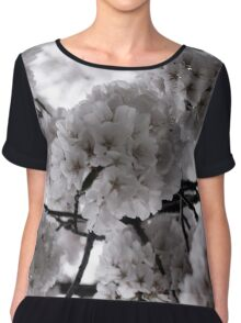 Pale Spring Women's Chiffon Top
