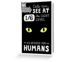 Cats can see at 1/6th the light level as needed by Humans Greeting Card