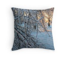 Ice Storm 2013 Throw Pillow