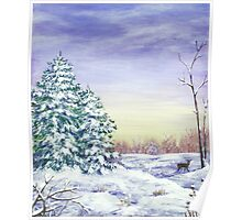 Winter Pine Trees Poster