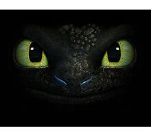How to Train Your Dragon 05 Photographic Print