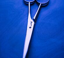 Nogent Scissors by YoPedro