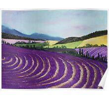 On Lavender Trail Poster