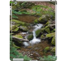 Dunnfield Creek  -NJ iPad Case/Skin