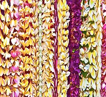Plumeria leis in Pink & Purple by Angelina Hills