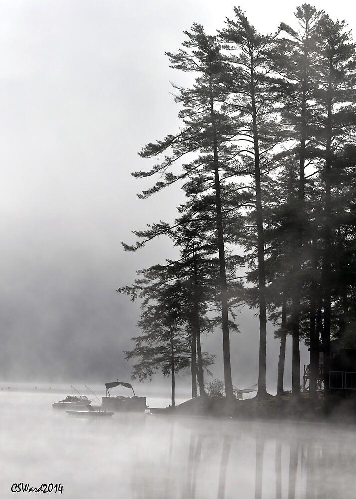 Foggy Point by Caleb Ward