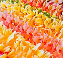 Plumeria leis in hanging by Angelina Hills