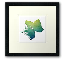 Blue Green Maple Leaf Framed Print