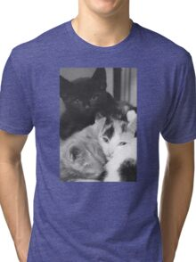Pile of Kittens (Clothing Products) Tri-blend T-Shirt