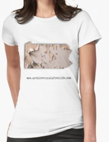 Pennsylvania Urbex Womens Fitted T-Shirt