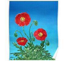 Poppies on Blue Poster