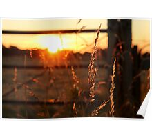 Sunset in Somerset Poster
