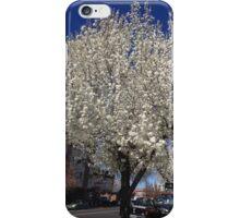 City Spring iPhone Case/Skin