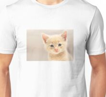 Ginger Kitten (Clothing Products) Unisex T-Shirt
