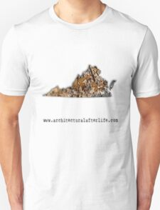 Virginia Urbex Unisex T-Shirt