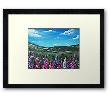 Lupine Hills Framed Print