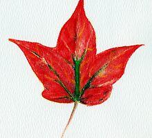 Maple Leaf by Anastasiya Malakhova