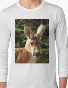 Red Kangaroo Long Sleeve T-Shirt