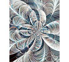 Soft Palette Photographic Print