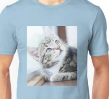 Tabby Kitten Unisex T-Shirt