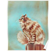 Watch Cat Poster