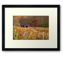 Barns - Country Life  Framed Print