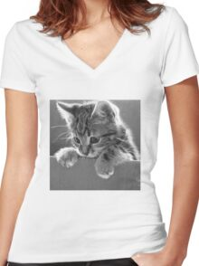 Kitten in a box (Clothing Products) Women's Fitted V-Neck T-Shirt