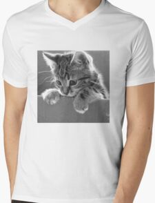 Kitten in a box (Clothing Products) Mens V-Neck T-Shirt