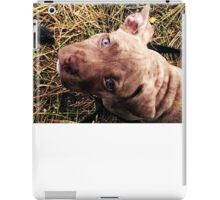 Blue eyed beauty iPad Case/Skin