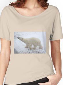 Inquisitive Polar Bear Women's Relaxed Fit T-Shirt