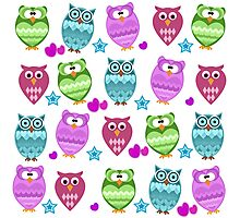funny owls Photographic Print