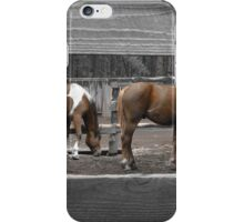 Grazing in Color iPhone Case/Skin