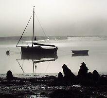 Tidal Surge, River Deben, Suffolk by wiggyofipswich