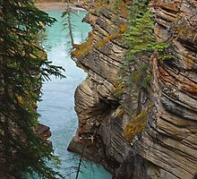 Downstream from Athabasca Falls by TeaCee