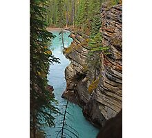 Downstream from Athabasca Falls Photographic Print