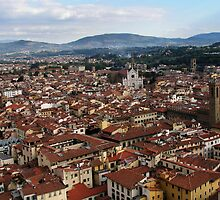 Rooftops Of Florence by davidandmandy