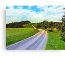 Apple trees along the country road | landscape photography Canvas Print