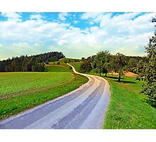 Apple trees along the country road | landscape photography Photographic Print