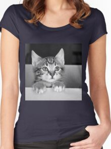 Kitten in a box 2 (Clothing Products) Women's Fitted Scoop T-Shirt