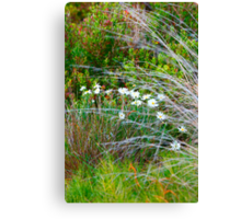 Spring Native Garden Canvas Print