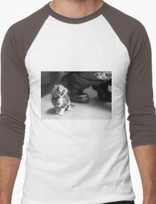 Tiny Kitten (Clothing Products) Men's Baseball ¾ T-Shirt
