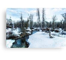 Dreaming of Cottonwood Creek Canvas Print