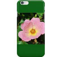 Soft Pink Rose iPhone Case/Skin