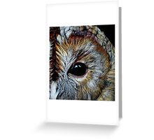 Tawny Owl in Coloured Pencil Greeting Card